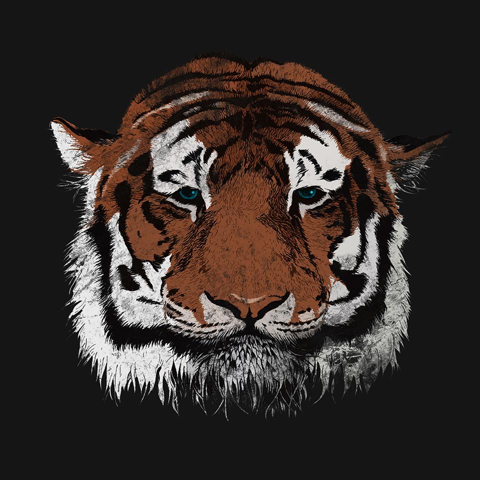 tigerT.jpg