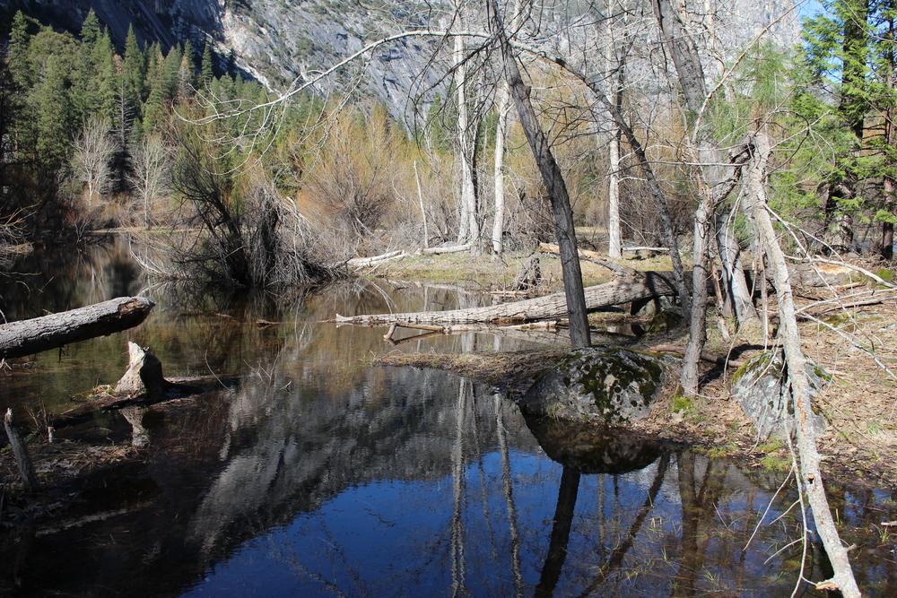 mirror lake 5.JPG