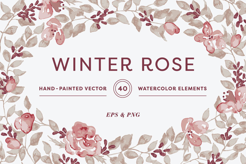 Winter-Rose-Collection.jpg