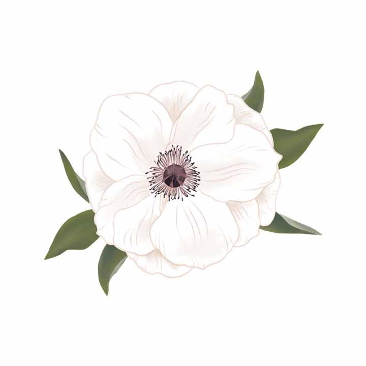 Laurel Autumn :: Illustration