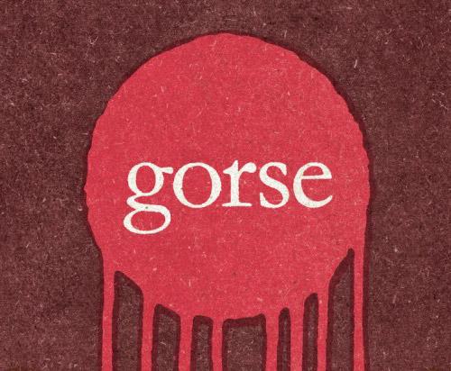 gorse-main (1).jpg