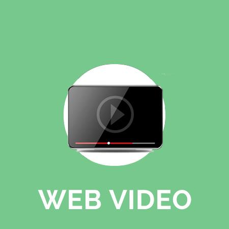WEB VIDEO.jpg