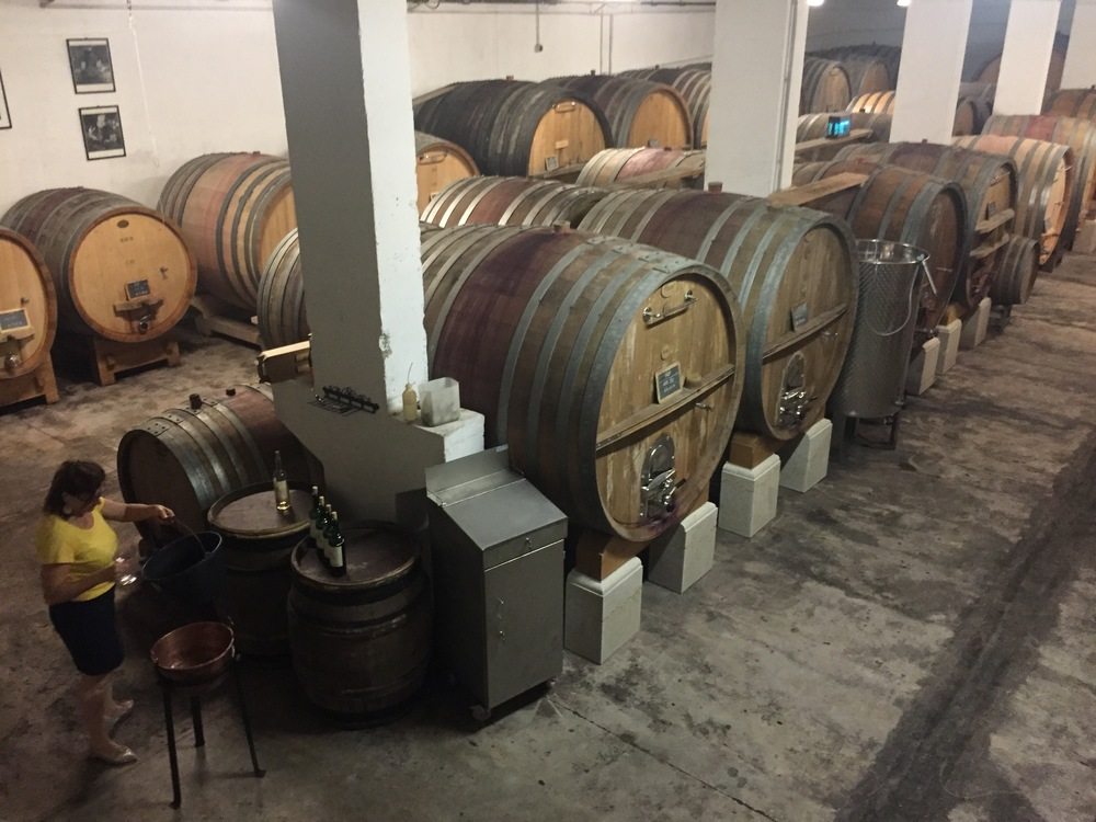 The barrel & foudre cellar.