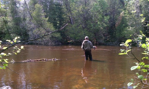 fly-fishing-the-fly-factor-wildlife-river-wading.jpg