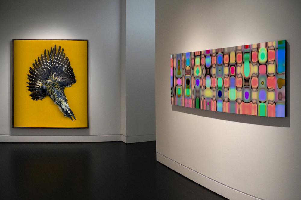 29.-Caldwell_Installation_2016_Gallery3A.jpg