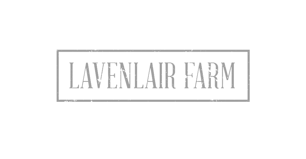 lavenlair-1024x532.png