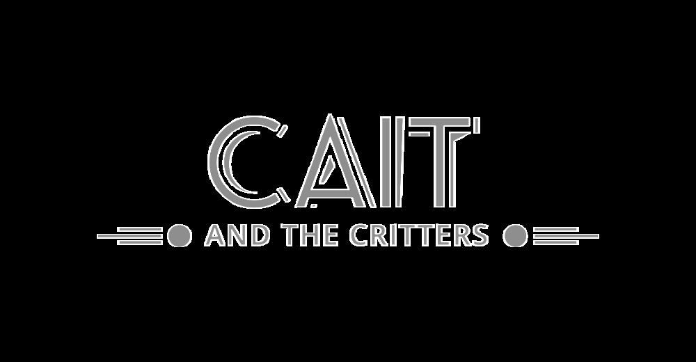 cait-1024x532.png