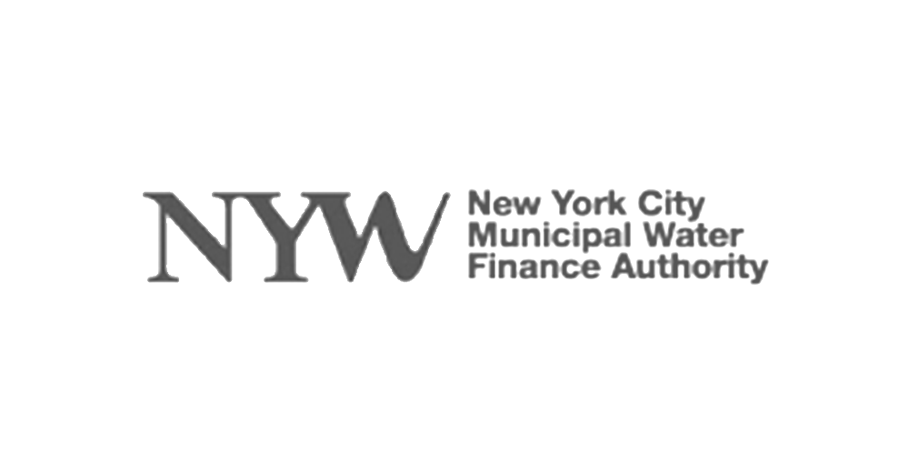 nyw-1024x532.png