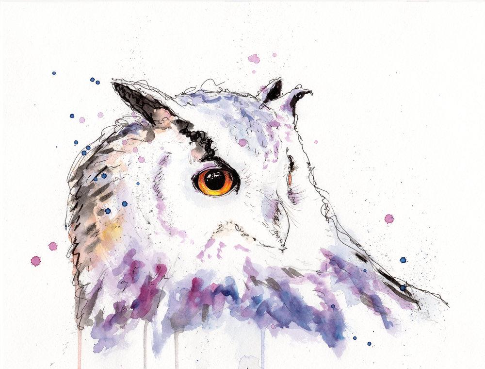 opus the owl.jpg
