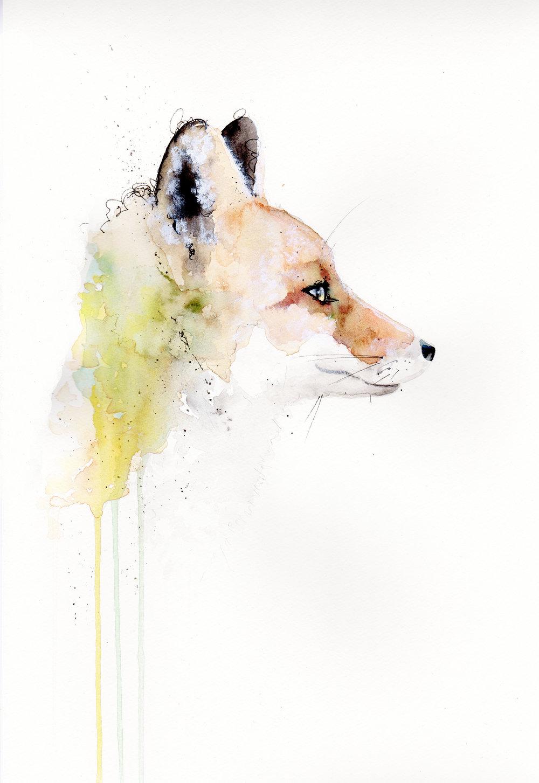 print sly the fox.jpg
