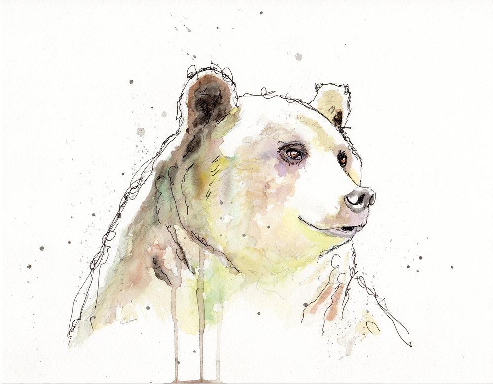 Ursa The Bear.jpg