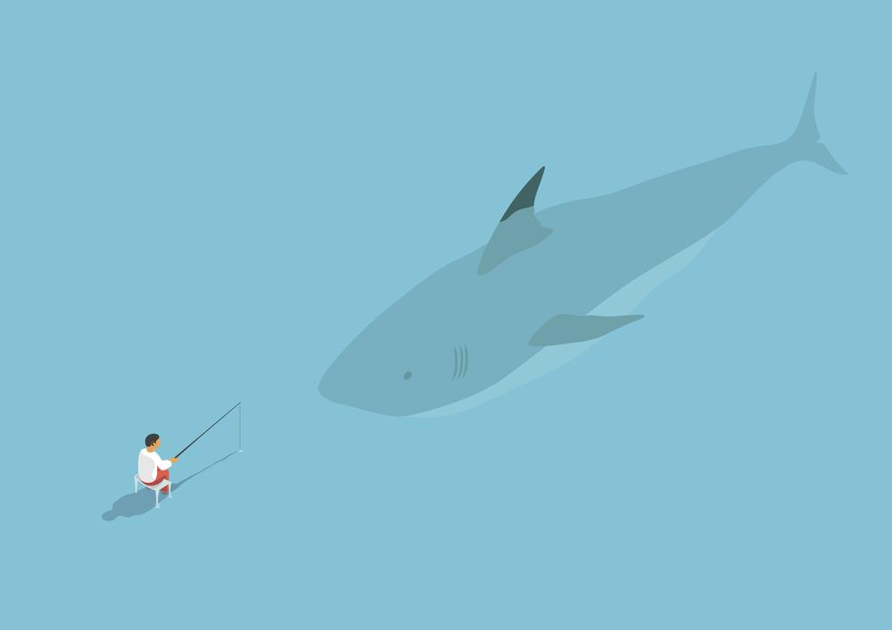 shark-01.jpg