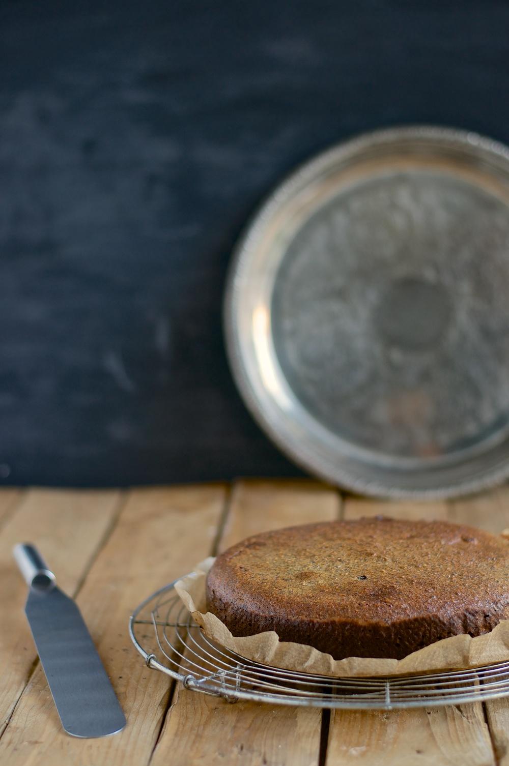 Poppyseed Hazelnut Cake with Chocolate Coating (gluten free) - Kitchen Hoopla