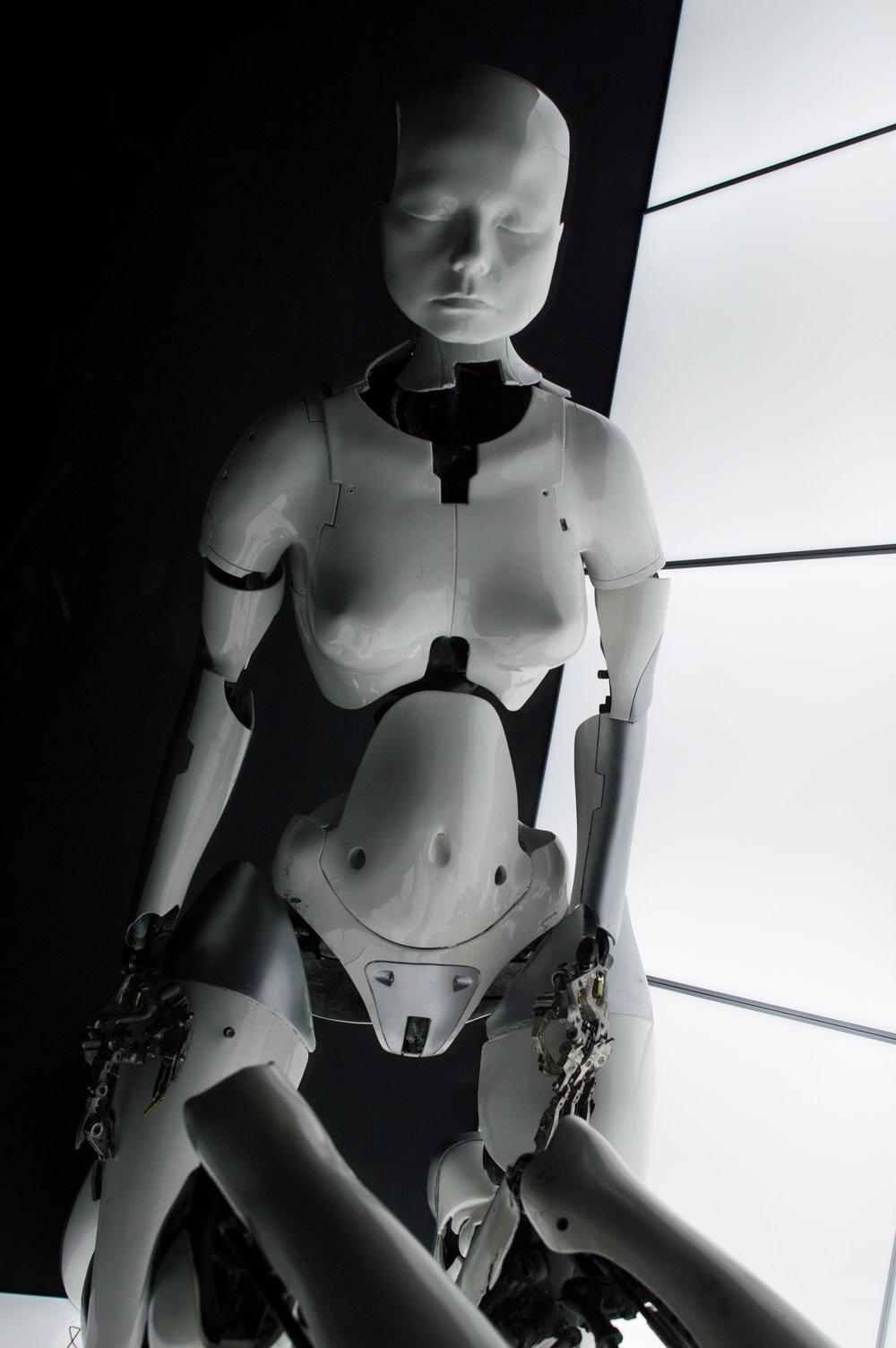 Bjork Gallery Opening at MoMA