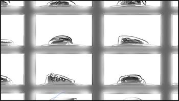 FOSSIE9.jpg