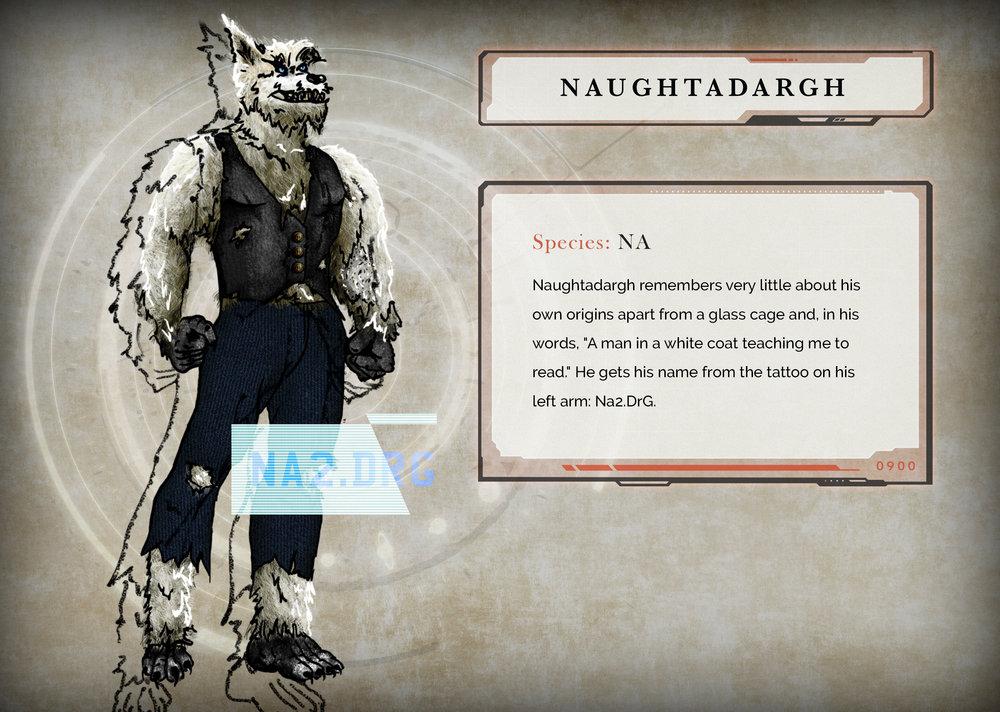 NA2DRG_sketch-FINAL.jpg