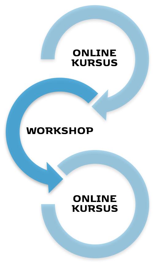 Onlinekursus.png
