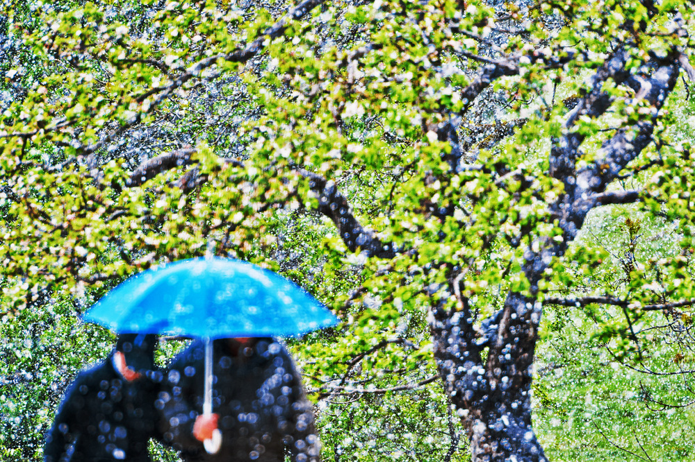 30x40  201305  blue umbrella in snow  6778 sh sRGB.jpg