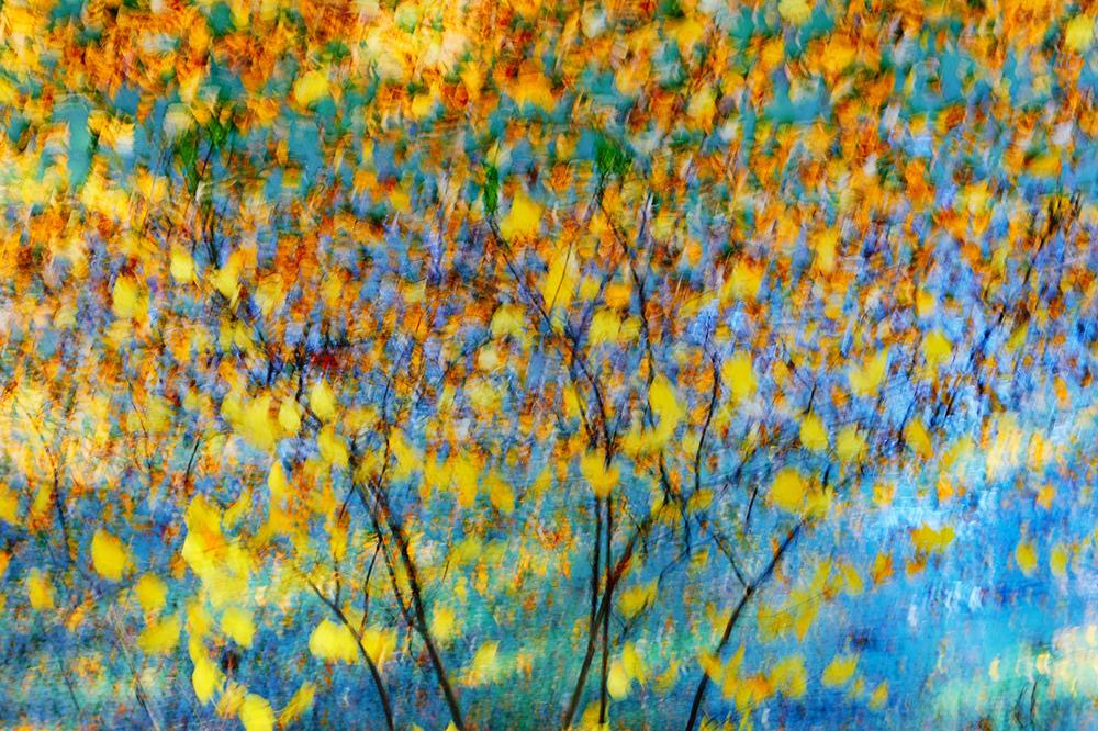 201510  autumn colors 2170 sh sRGB.jpg