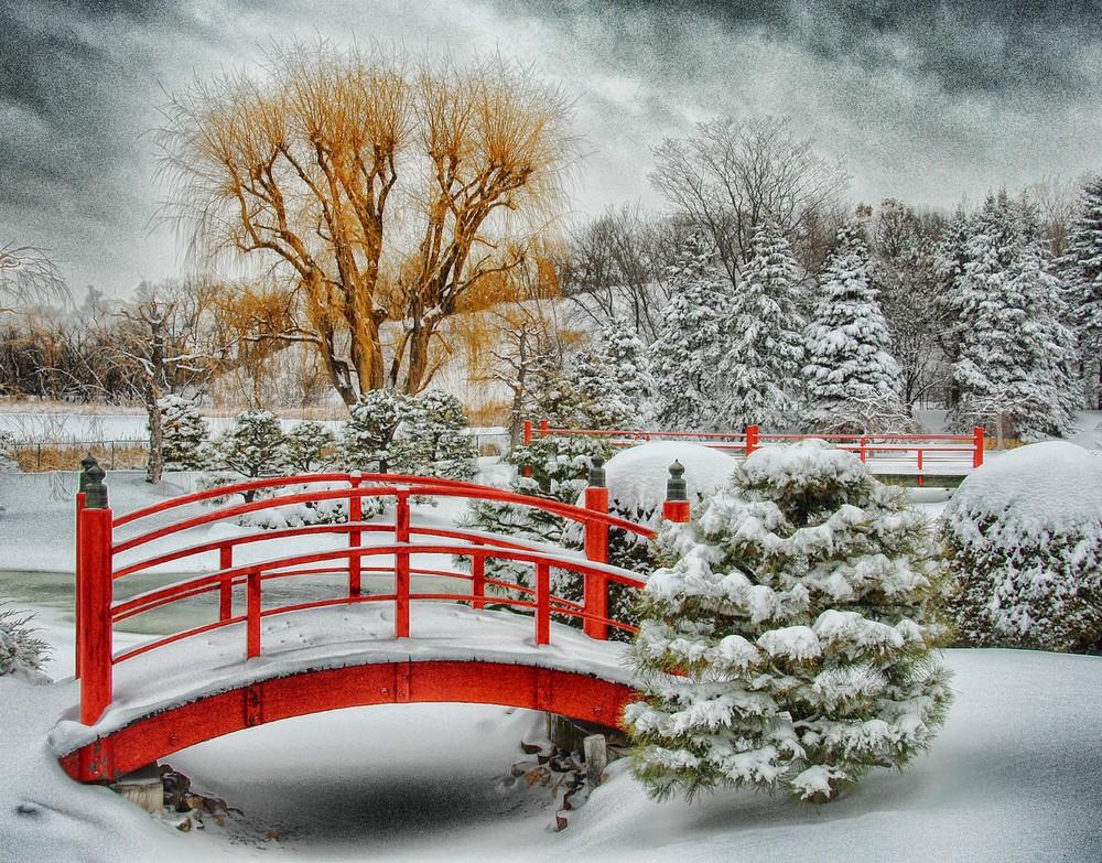 Japanese Garden 23x18.jpg