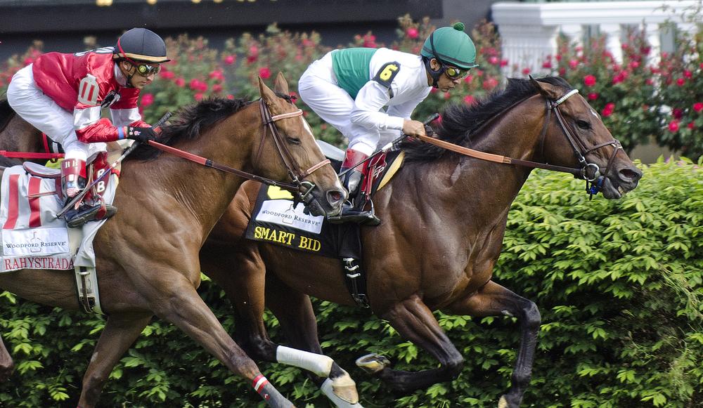 horses_4017.jpg