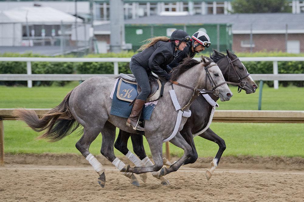 Two Horses_1050.jpg