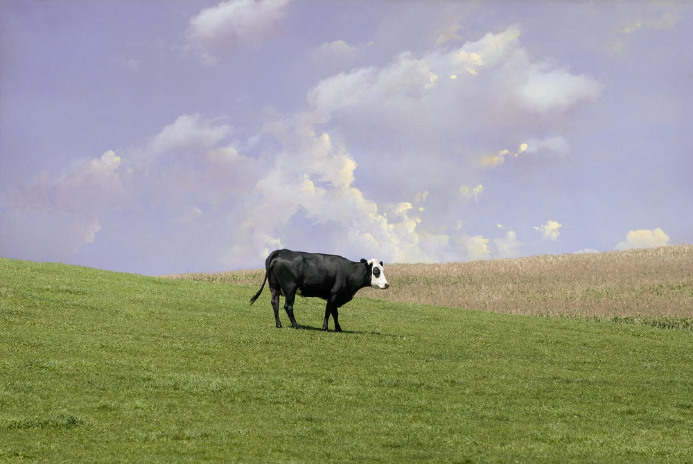 Cow and Clouds_Final_Version_magenta.jpg