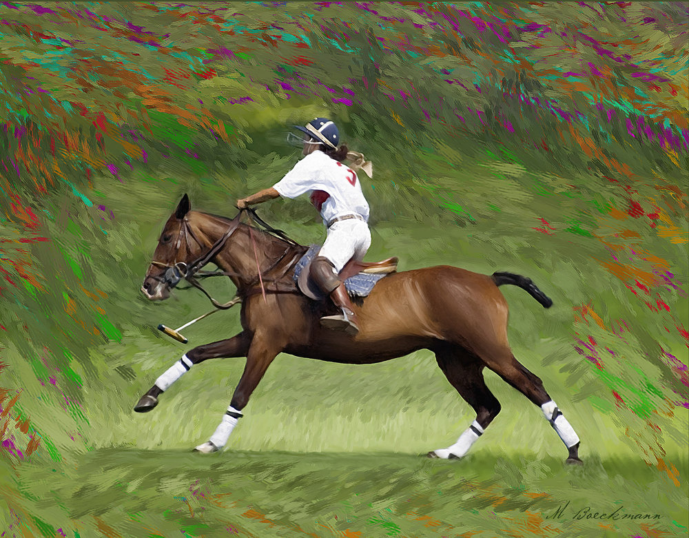 Polo_rider 11x14 full color.jpg