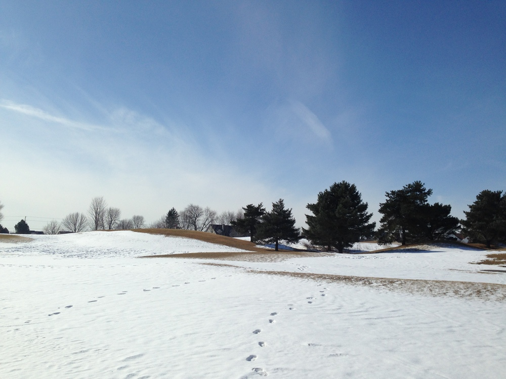 wide sky golf course.JPG