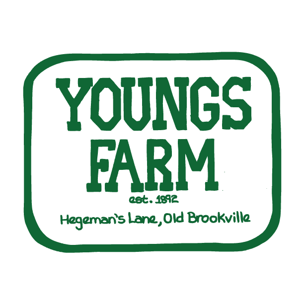 Youngs Farm