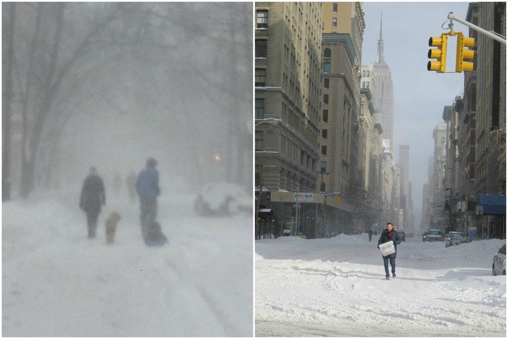 winter scenes.jpg