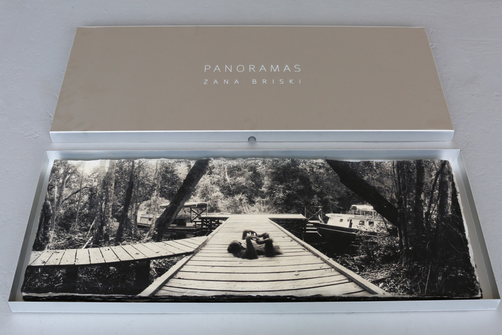 Orangutan , collector's box.  Archival pigment print on handmade Japanese Kozo,  15 x 38 inches.