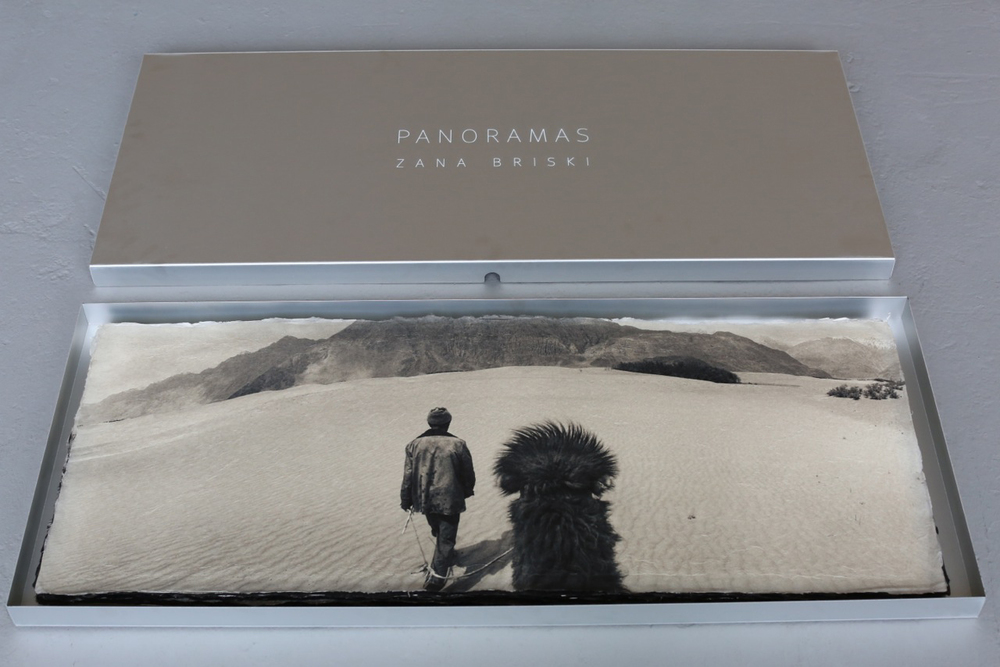 Bactrian camel , collector's box.  Archival pigment print on handmade Japanese Kozo,  15 x 38 inches.