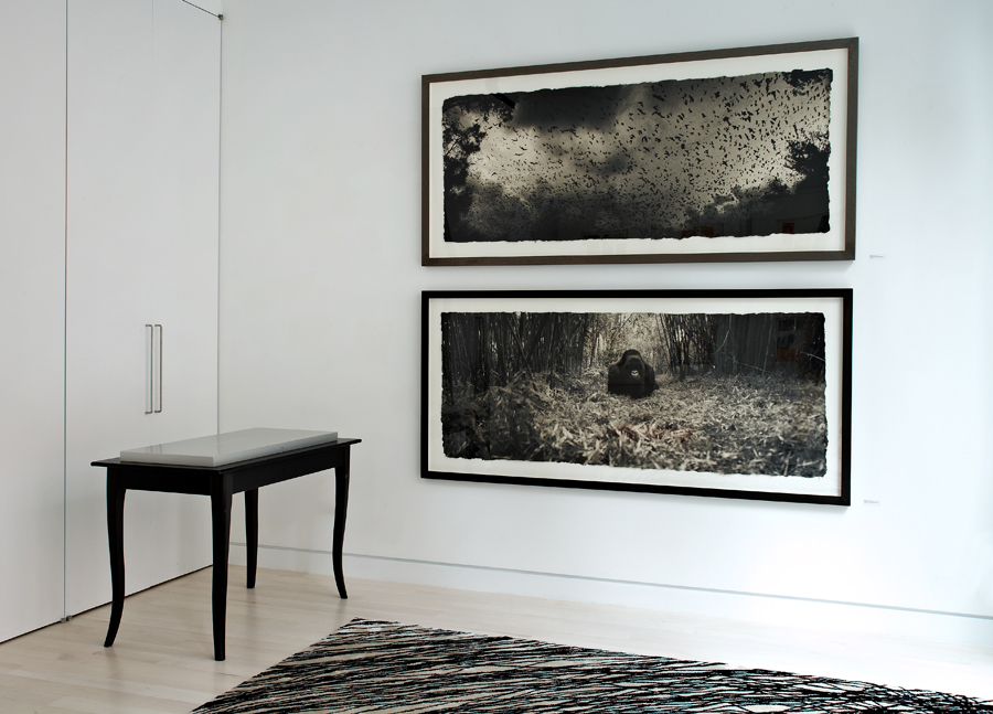 Bat cloud and Mountain gorilla , Waterfall Mansion, New York City.  Archival pigment prints on handmade Japanese Kozo, 30 x 72 inches.