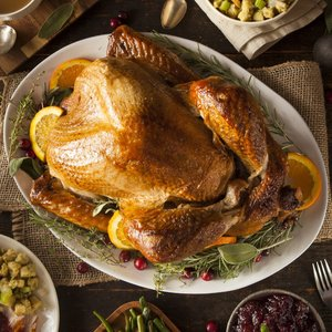 turkey-pic.jpg