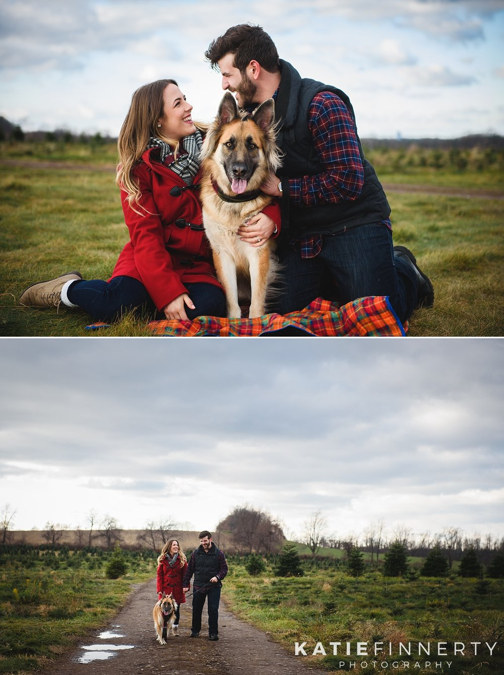 Christmas Tree Farm Rochester Engagement Session