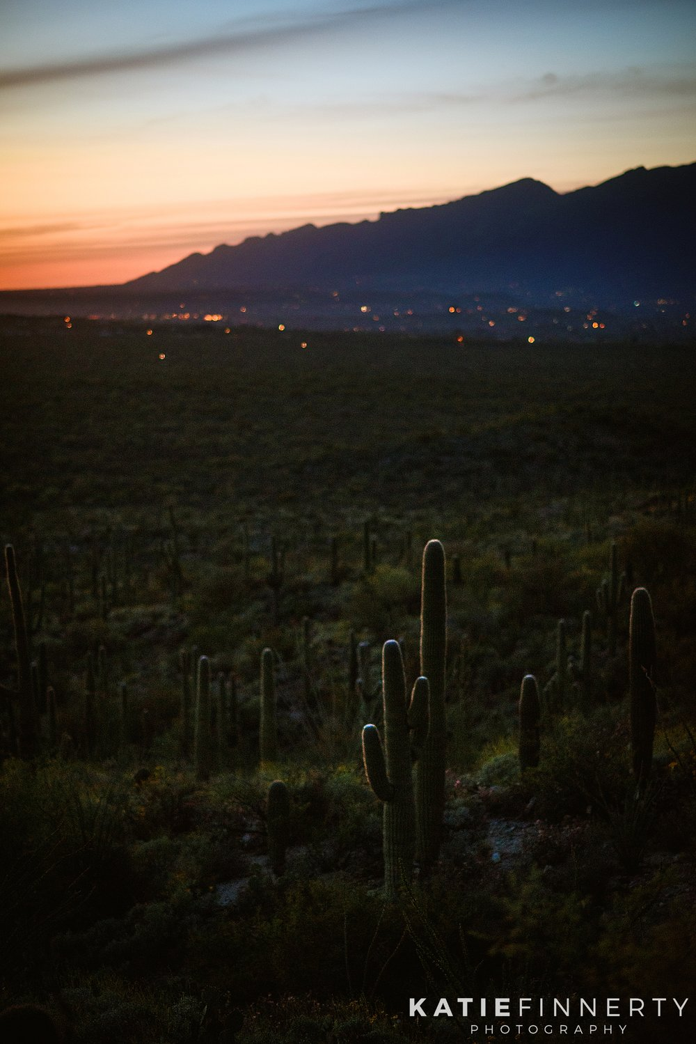 Saguaro National Park Sunset Landscape Photography