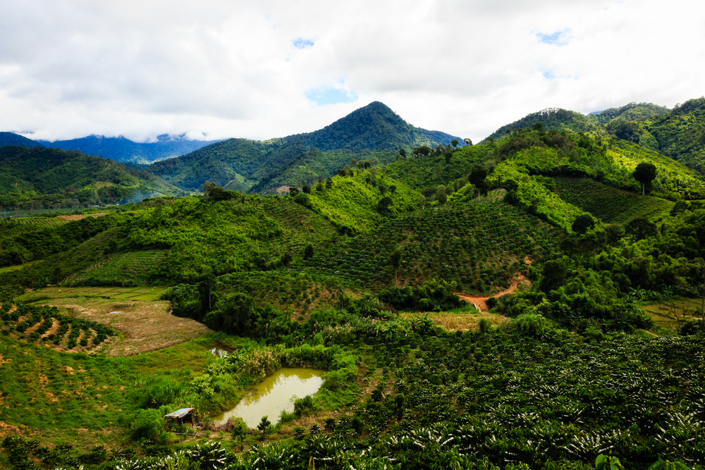 adventure-photography-motorcycle-vietnam-becky-brockie-mountains-green.jpg