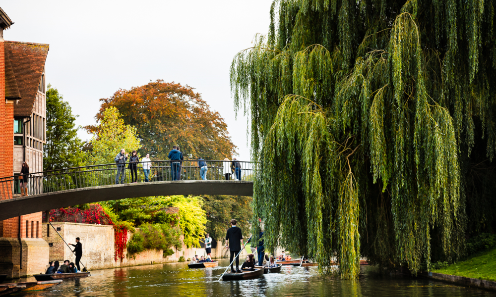 Punting on the River Cam, Cambridge