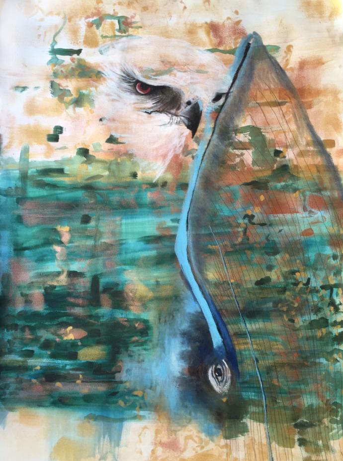 Vulcano Hawk Blue Whale