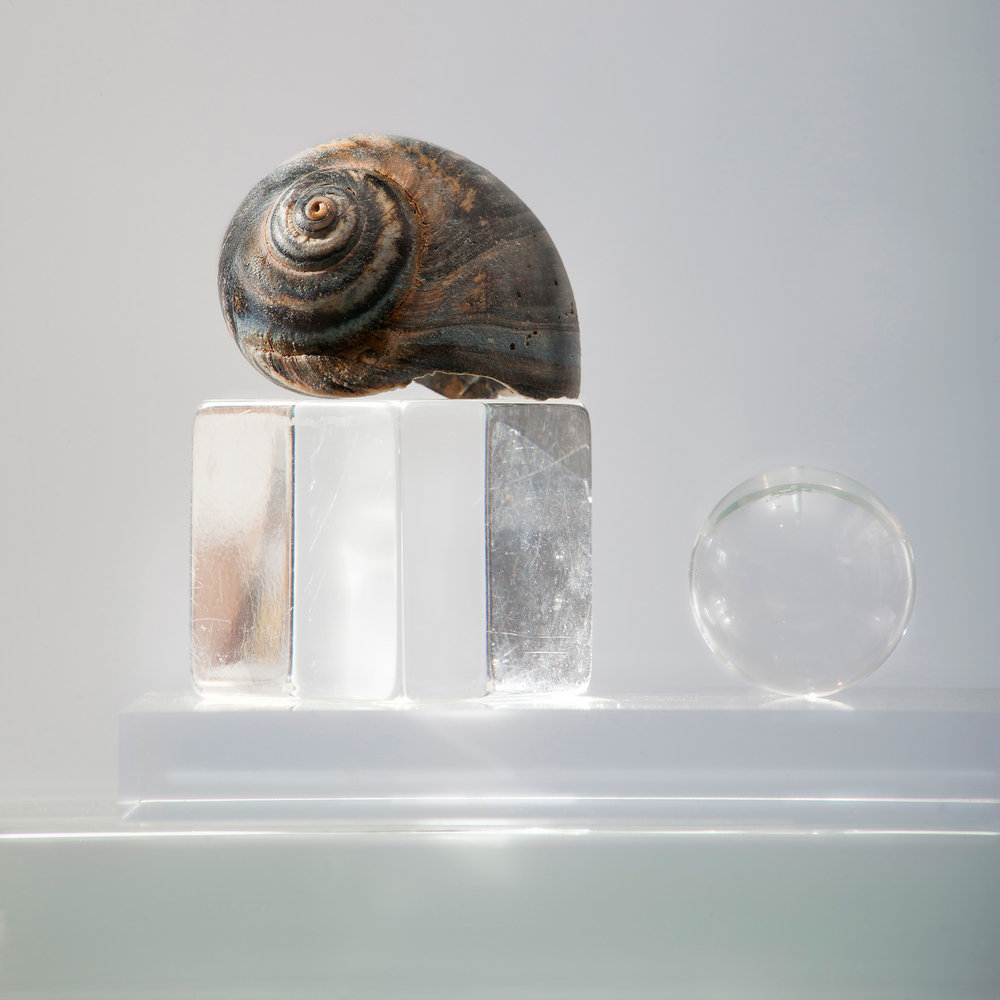 "Cube Shell and Sphere , archival pigment print, 32.5"" x 32.5"" 2014  Edition of 10"