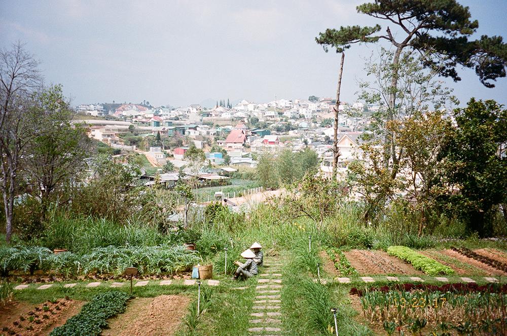 Dalat, Veitnam