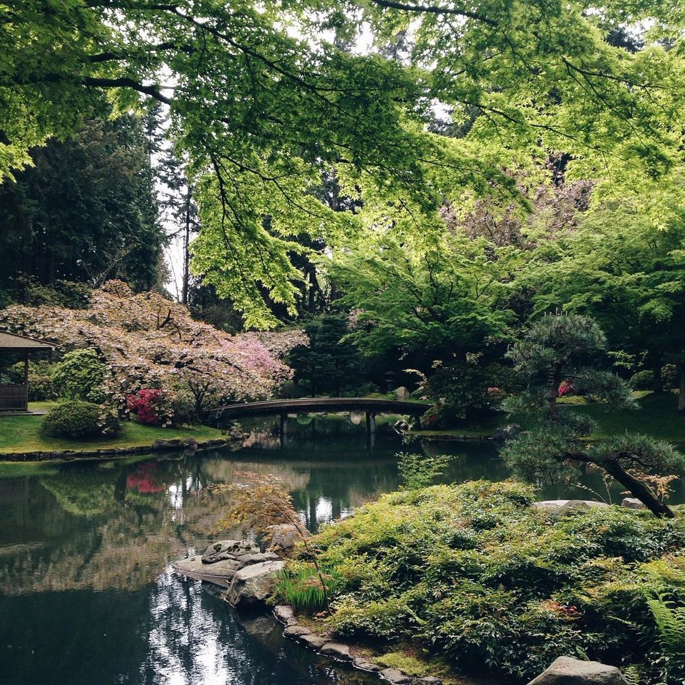Lush springtime at the Nitobe Memorial Gardens