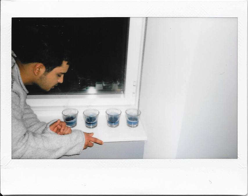 Polaroids-2015-008.jpg