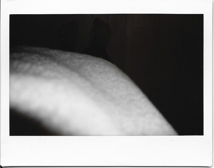 Polaroids-2015-036.jpg