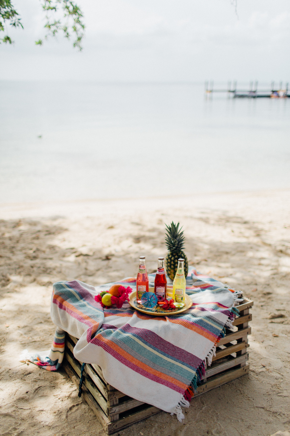 Free_Reverie_Styled_Photoshoot-Summer_Drink_Recipes-Florida_Party_Inspiration232.jpg