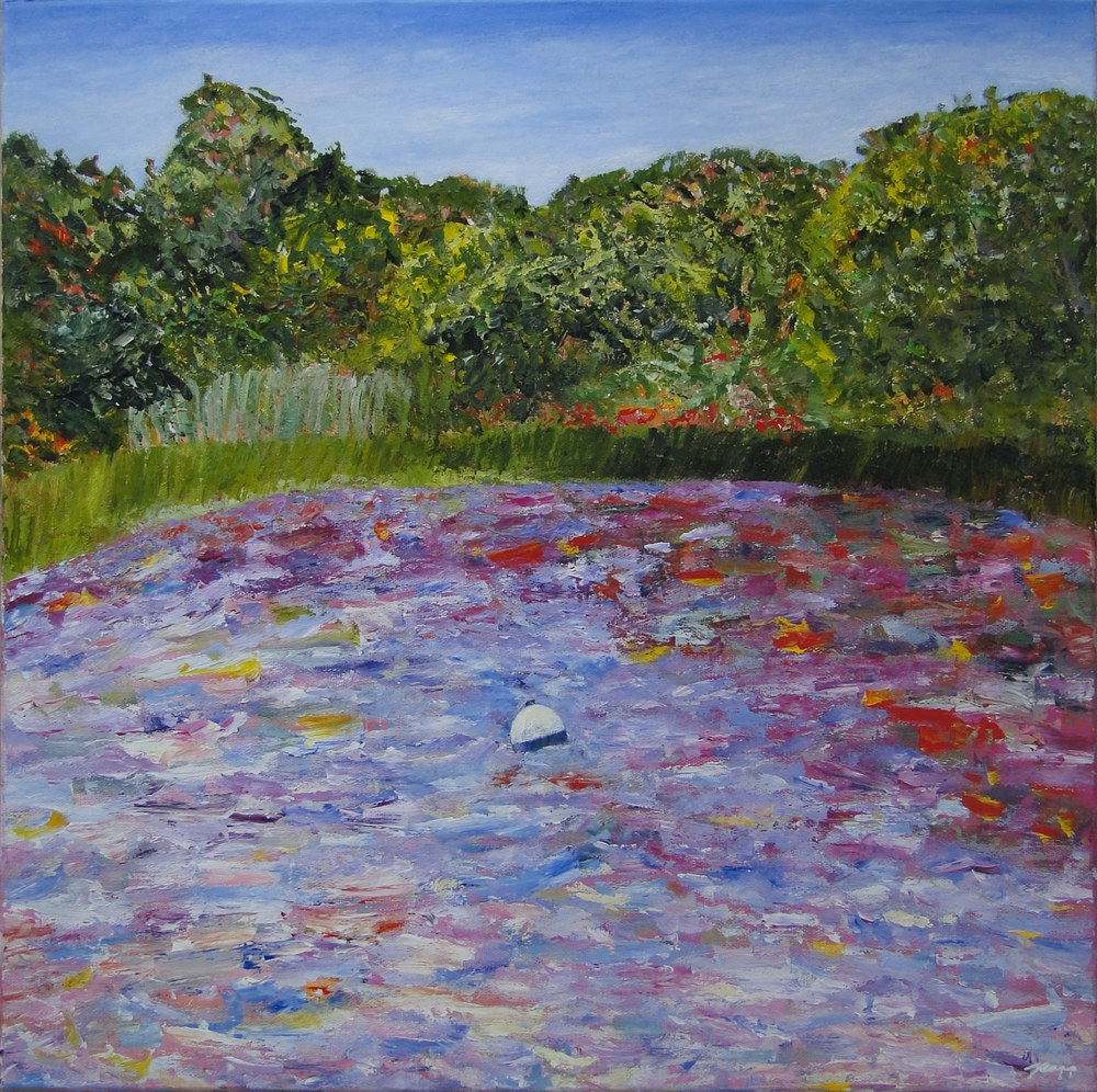 The Creek behind Primrose