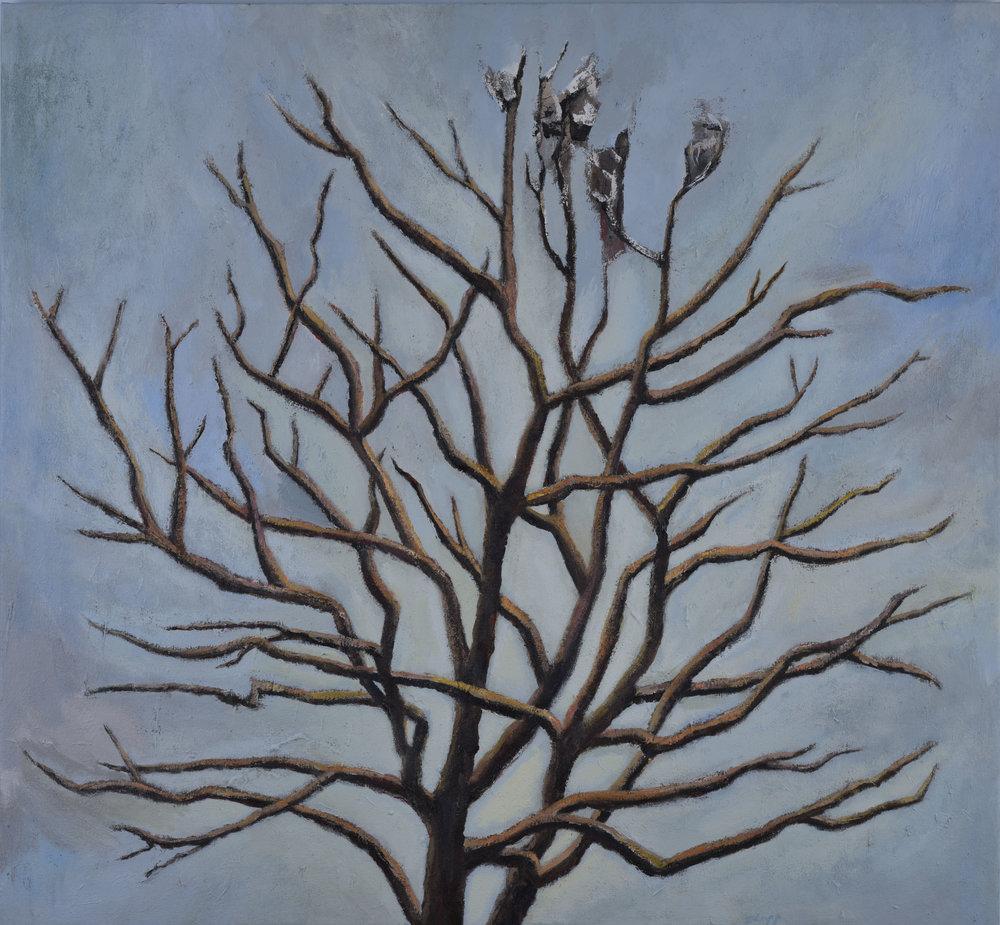 TREE (CHANGE)