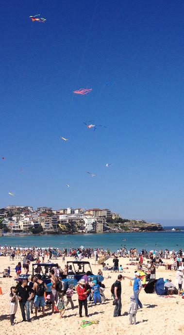 Kites1.png