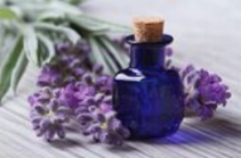Main Header Aromatherapy.jpg